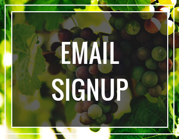 Layton's Chance Vineyard & Winery - Email Sign Up