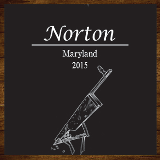 Product Image for Norton 2015